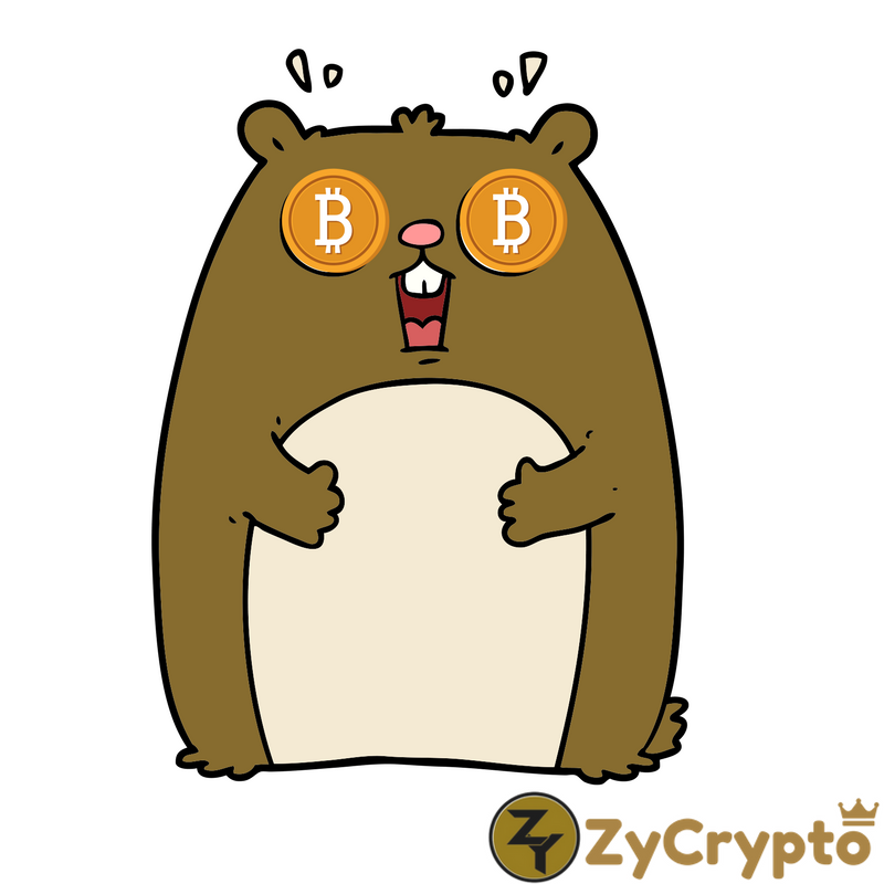 bitcoin skeptics