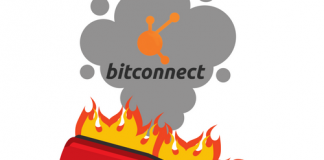Bitconnect Crash insights