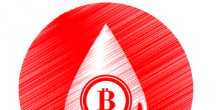Analysts Foretells the Future of Bitcoin; Says Price will Drop Below $2,800