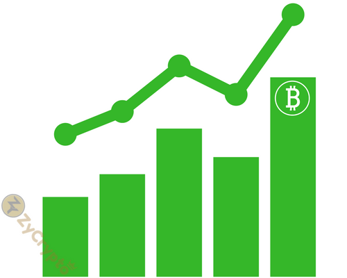 Bitcoin to hit $25,000 by end of this year says Bitcoin Big Whale