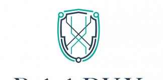 Raadyx Blockchain Platform Opens its Doors Wide for Summer Interns