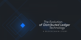 SkyCoin Unveils its Innovative SkyCoin Fiber Solution for a Frictionless Blockchain