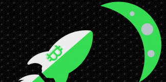 After A Heavy Fall Bitcoin Price Still Steady Green, Preparing For Moon ?