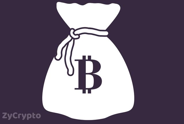 Arguments surrounding the Monetary Status of Bitcoin