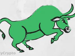 Brian Kelly Predicts Bitcoin Bull Run on the Cards
