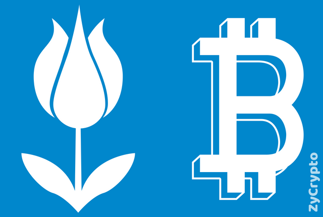 Why Bitcoin is linked to the Dutch Tulip Mania