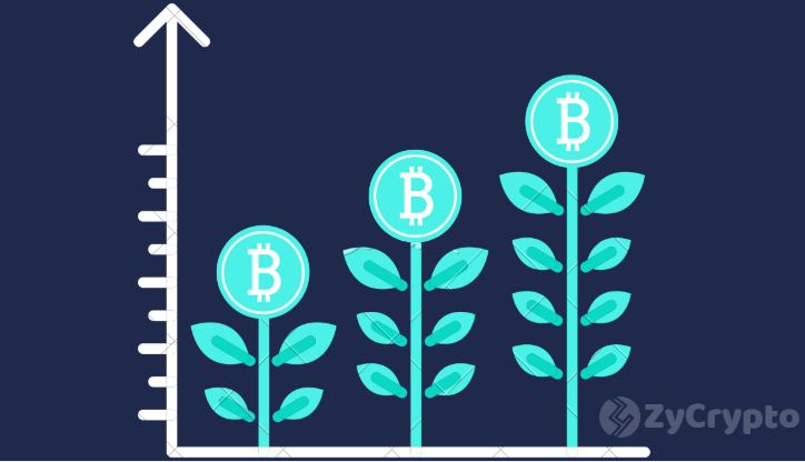Bitcoin Is Currently Experiencing Organic Growth Which is best For Stabilization