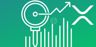 Analysis: Ripple (XRP) is Sky Rocketing the Crypto Market