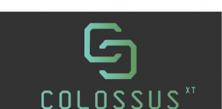 ColossusXT Blockchain Project Offers Solutions to the Problems facing Digital Assets