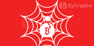 Female DJ Murders Her Own Kitten In Return for Bitcoin On the Dark Web