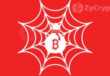Bit Hit: The Case of the Dark Web Crypto Murder
