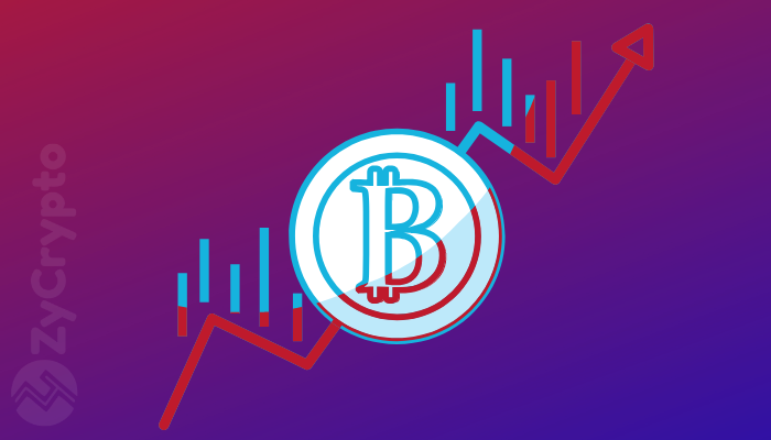 Has Bitcoin bottomed out? Will 2019 see New Highs?