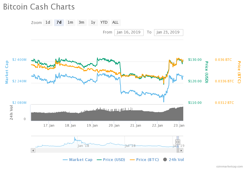 BCH wavers the bearish storms, accumulates 6% in gains