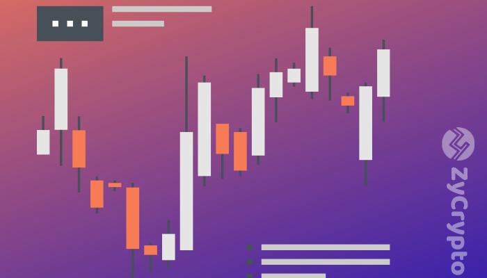Cryptocurrency Market Stabilises After Rapid Bullish Hike