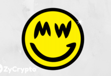 Grin Coin (GRIN) is Growing on Work not Hype