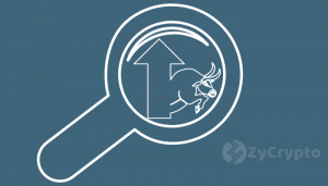 Will Fidelity Investments Trading Platform Start The Next Bull Run?