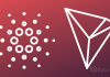 """Crypto Enthusiast - """"As long as ADA ranks above Tron, there is hope for this world"""""""
