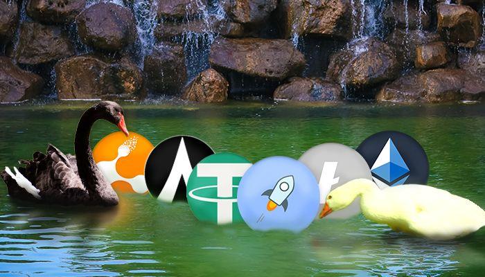 Altcoins; Golden Goose or Black Swan?