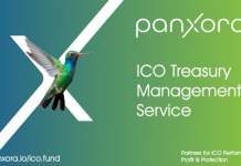 Panxora Launches Crypto treasury management Service to Safeguard ICO Assets