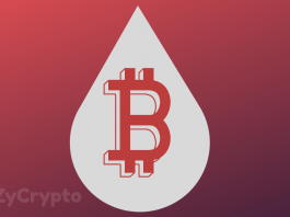 Poll: Majority Are Waiting To Buy Bitcoin's Dip At $10,000
