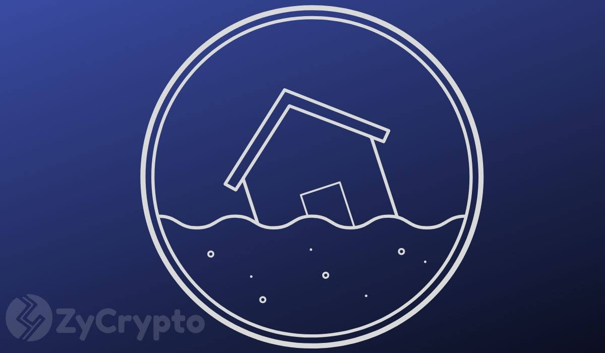 Ripple CEO: In A Crypto Market Flooded With Too Many Coins, XRP Offers Less Volatility And Better Utility