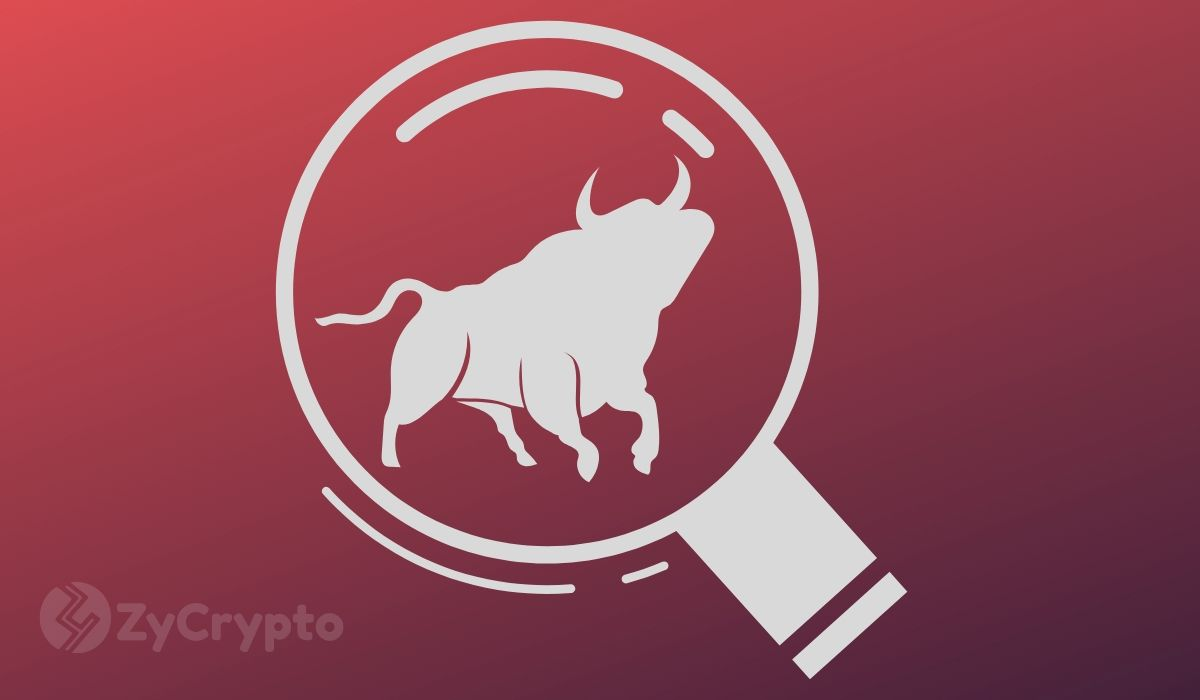 Tether/Bitfinex Slams Study Claiming They Aided The Lone Whale That Caused The 2017 Bull Run