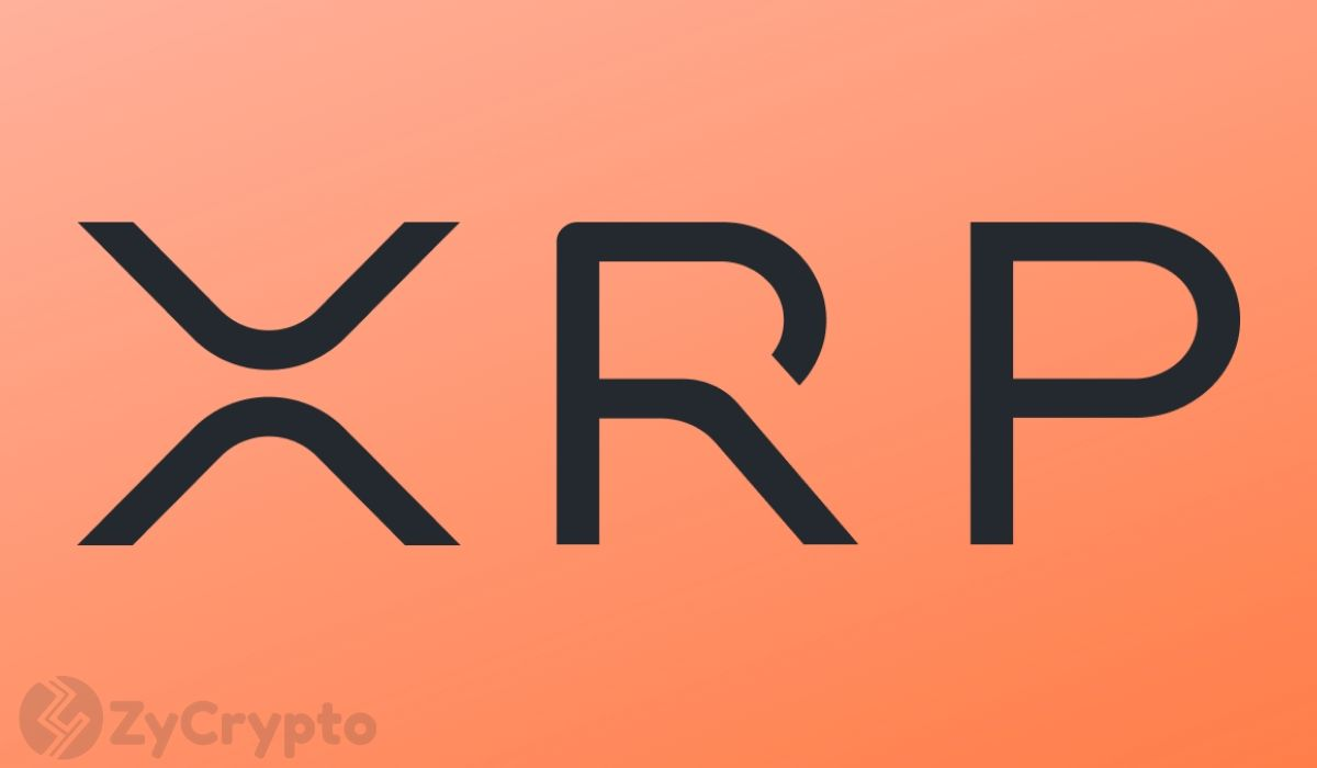 XRP Drops Below $0.25: Can The Internet Of Value Revive The Battered Prices?