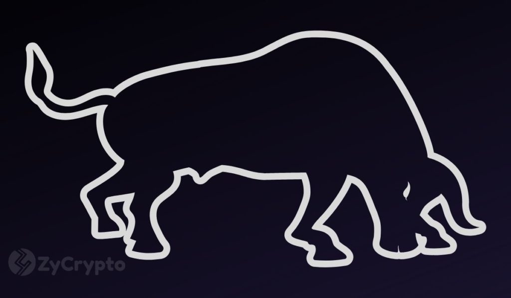 Prominent Bitcoin Bull Slashes 2020 Price Prediction As BTC Stagnates