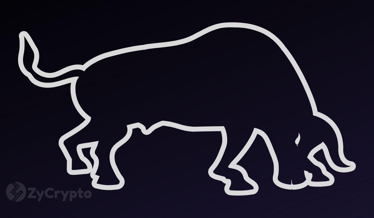 Prominent Bitcoin Bull Slashes 2020 Price Prediction As BTC Stagnates