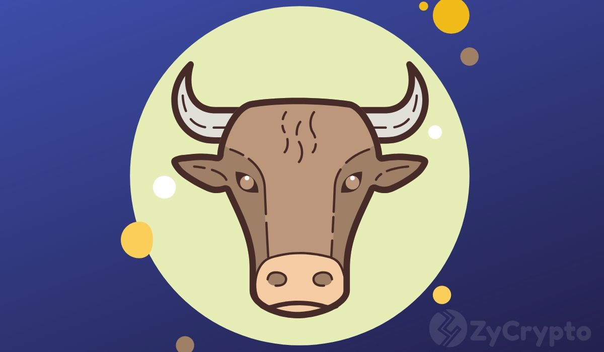 3 Reasons Why Bitcoin Price Is Ripe For A Mega 2020 Bull Market