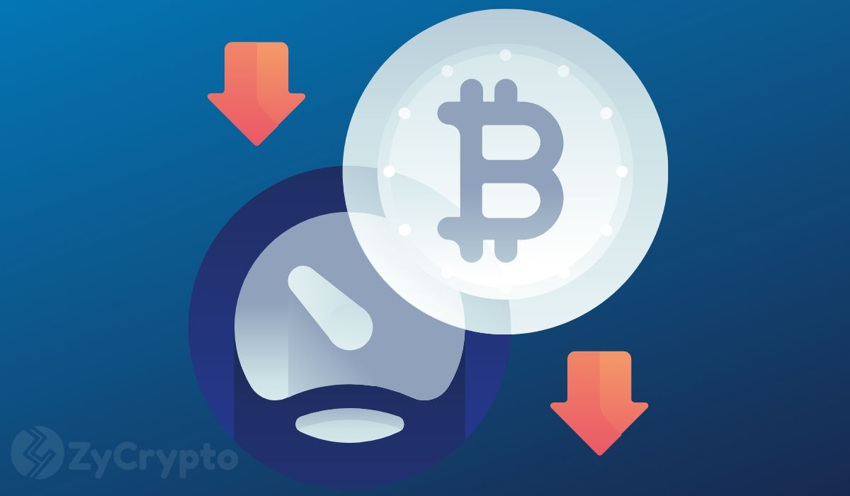 Bitcoin Crumbles Below $8,000 But Bitpay's Sonny Singh Predicts Race Past $20,000 This Year