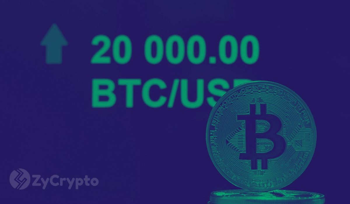 in which cryptocurrency should i invest 2021