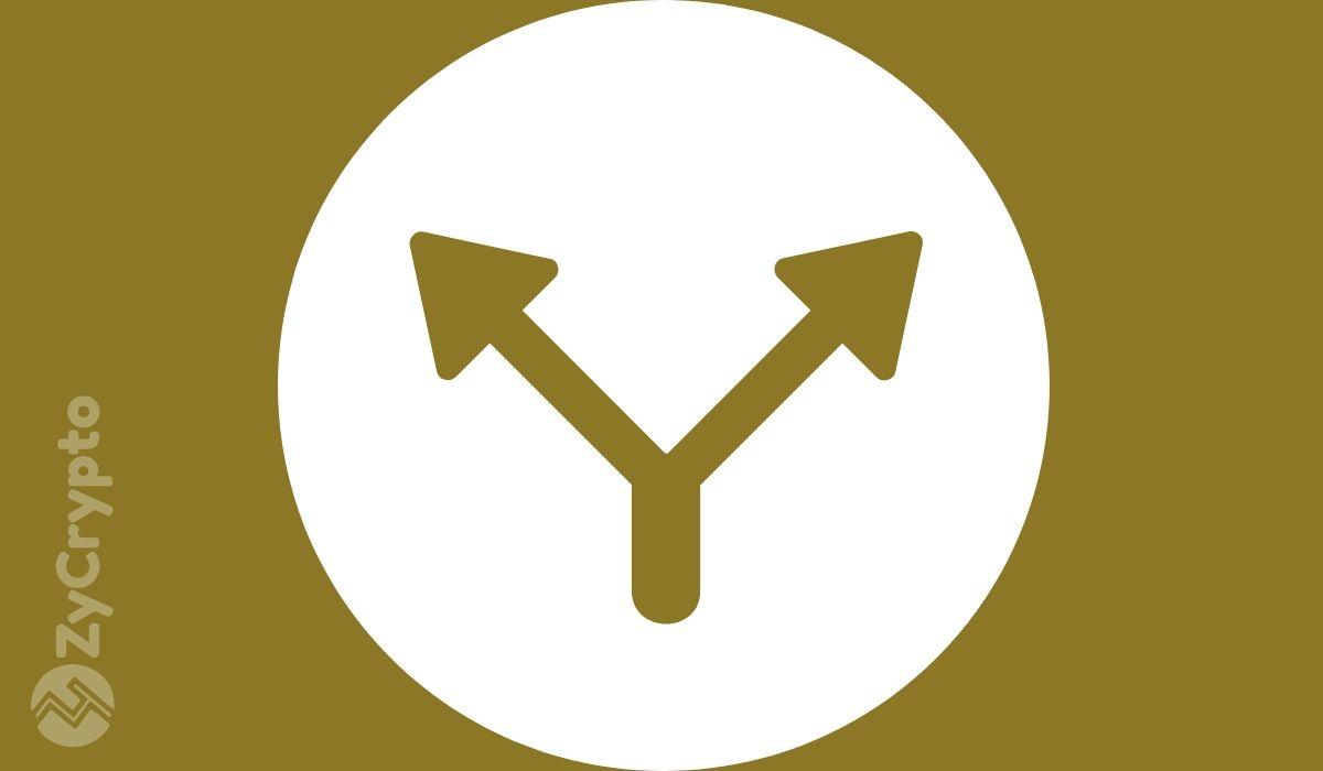 Bitcoin SV (BSV) Completes Genesis Upgrade, Begets Unintentional Chain Split