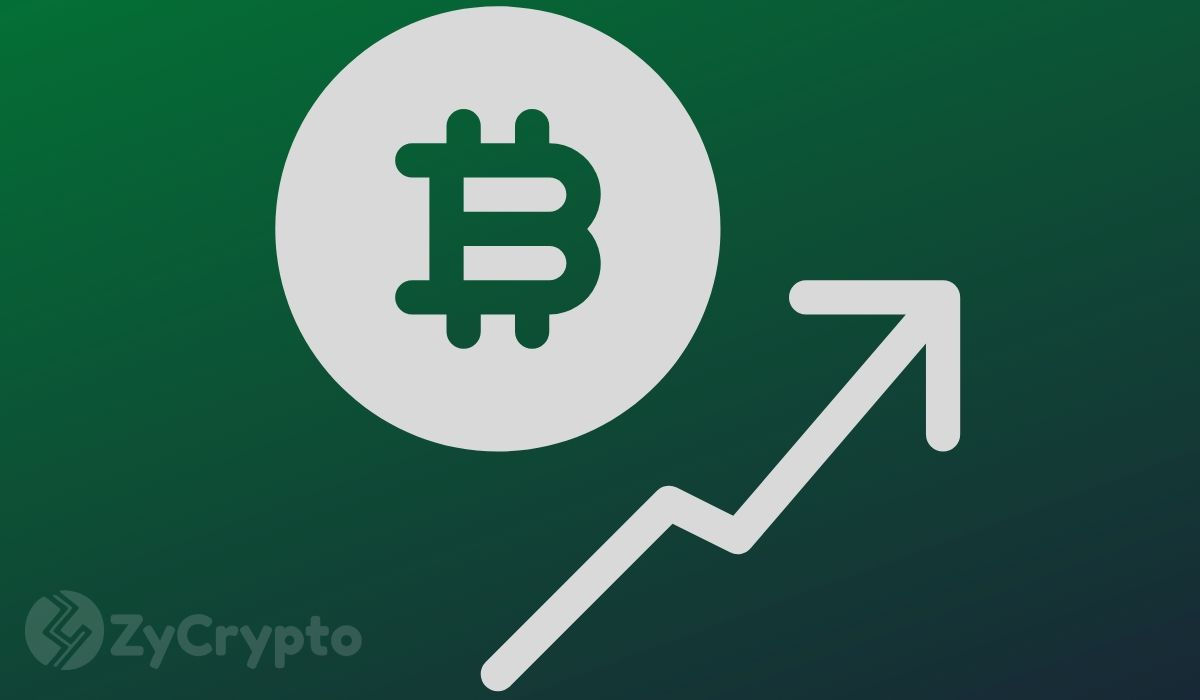 Bitcoin Price Hitting $20k Overnight Won't Be Surprising For Blockstream's Adam Back