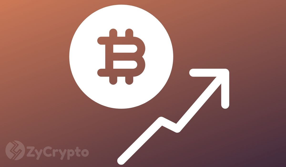Altcoins Will Be Destroyed By Bitcoin, Warns Analyst Following Jump To $8.5K