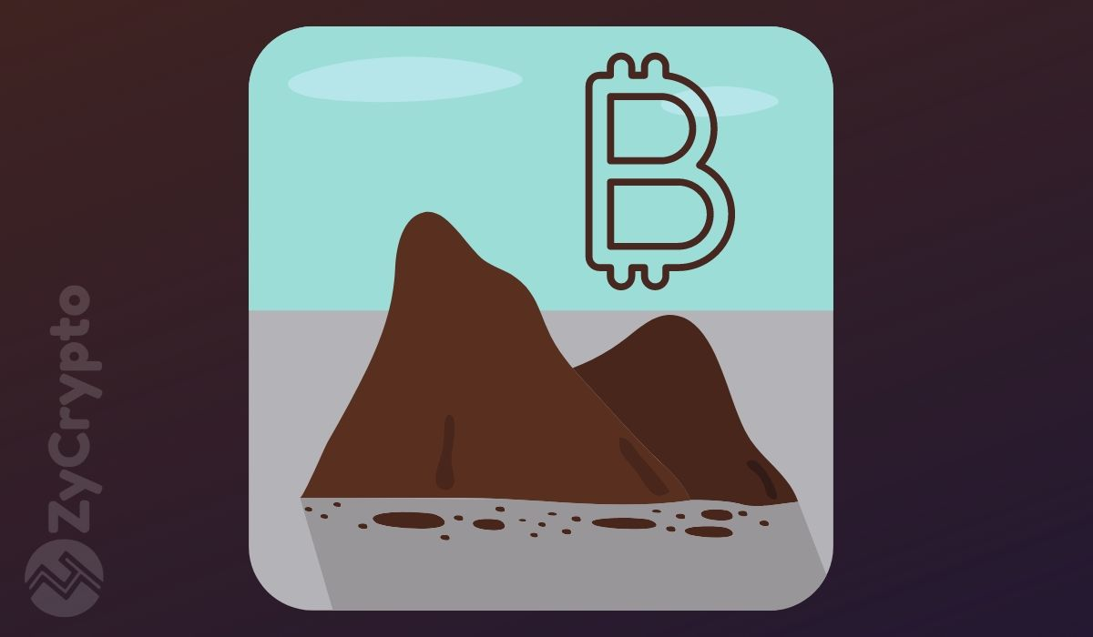 Are People Dumping BCH and BSV for the Original Bitcoin?