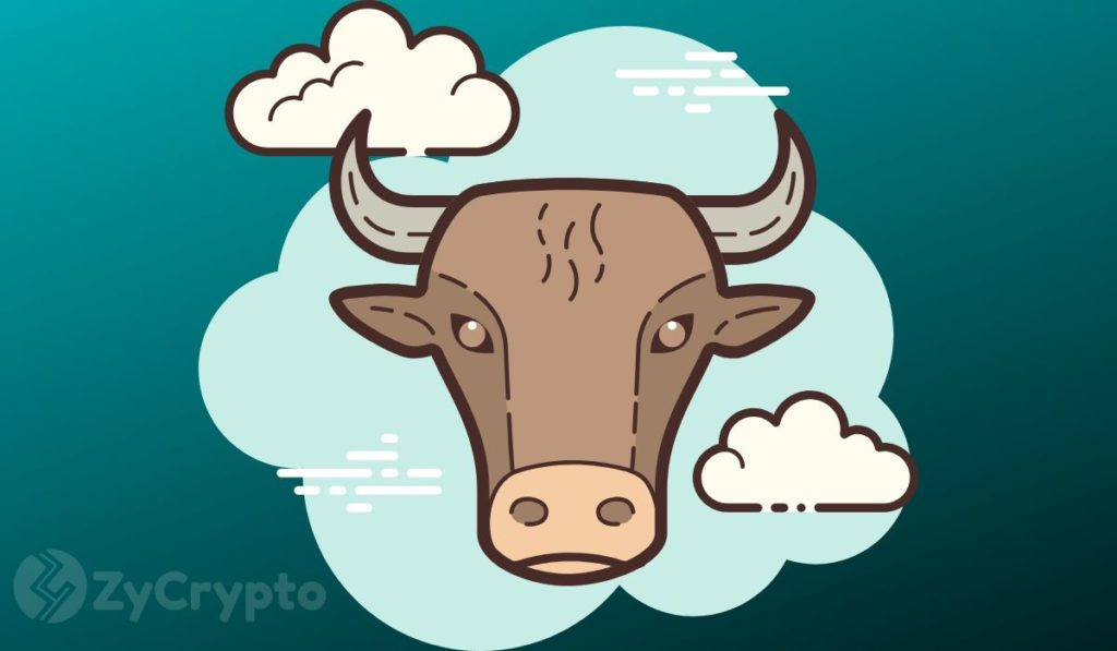 Bitcoin Primed For A Massive Bull Run - Bloomberg Analysts
