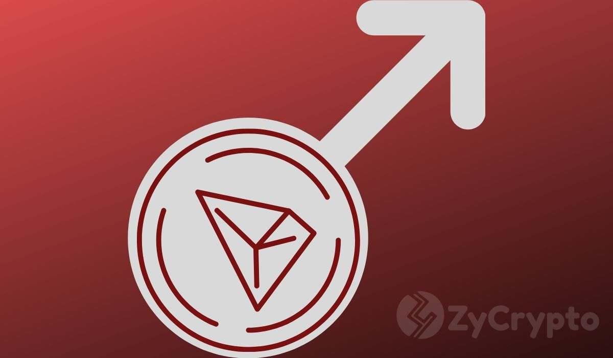 Tron Accounts Reach Record High Signaling Project Confidence; What About Price?
