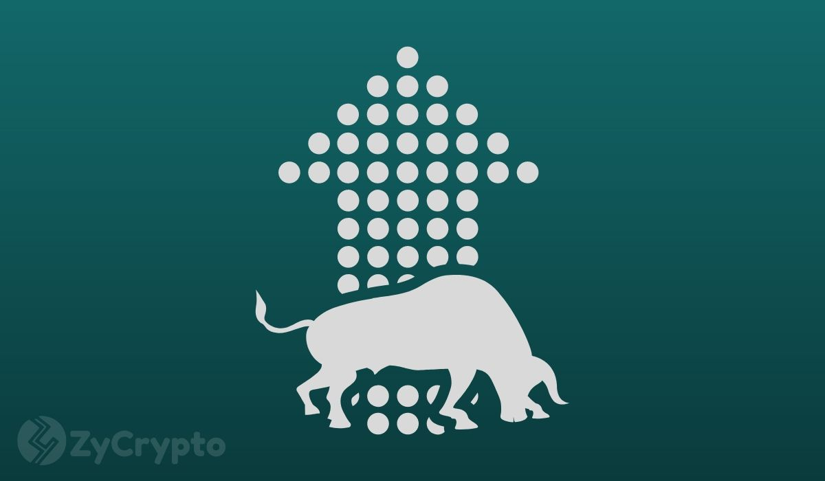Bitcoin Bull Markets Show Increasing Traction Among Altcoins