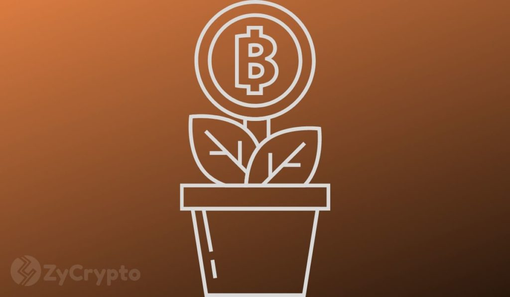 CZ Believes Bitcoin's Supply Is Running Out Amid Rapidly Growing Institutional Demand