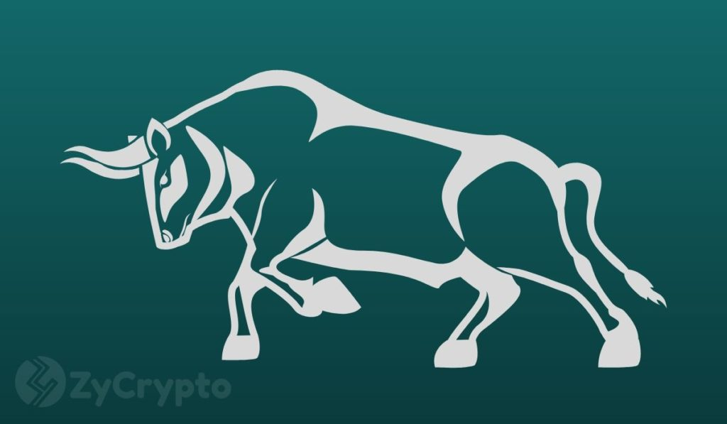 How Close is the Crypto Market to a 2017-Like Bull Run?