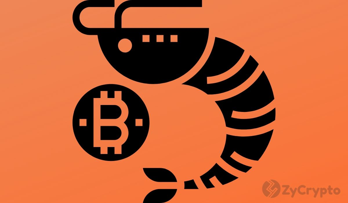 As Traditional Investors Flood the Bitcoin Market, Pundit Warns Of Risk On/Off Moves