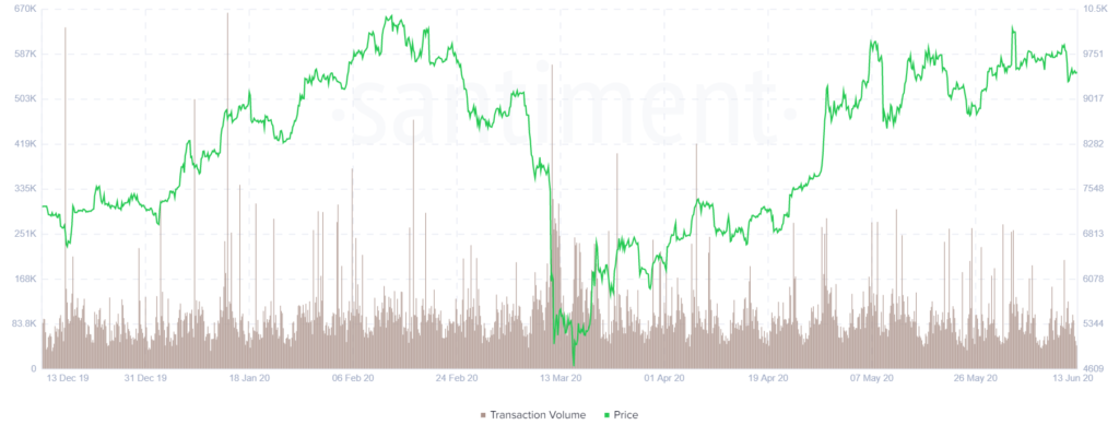Whale Numbers Spring Up, Revealing Positive Market Sentiment For Bitcoin $10K Breakout