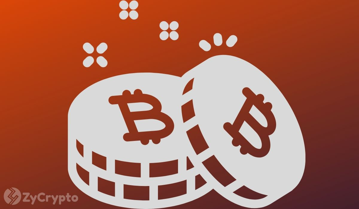 'Buying Bitcoin Is A Fool's Game', Says Economist Steve Hanke