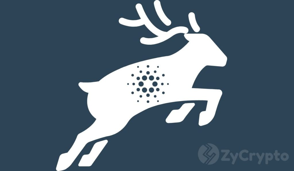 """Cardano's Shelley Transition Expected In Two Weeks Is """"One Giant Leap For Crypto"""": Weiss Ratings"""