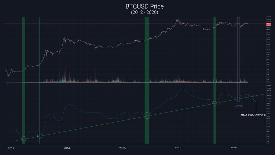 How The Pandemic Killed The Bitcoin Bull Run, According To Crypto Pundit
