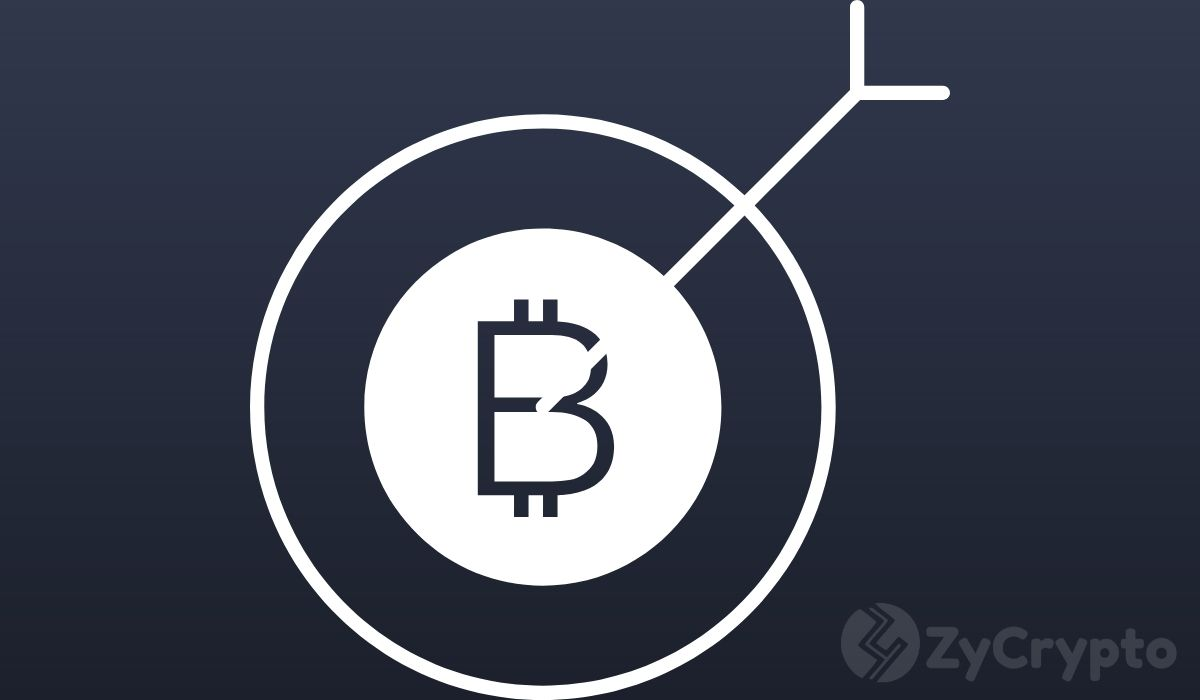 Why Bitcoin.org's secret owner wants Bitcoin price to stay in the $9k range for the next 3-4 years