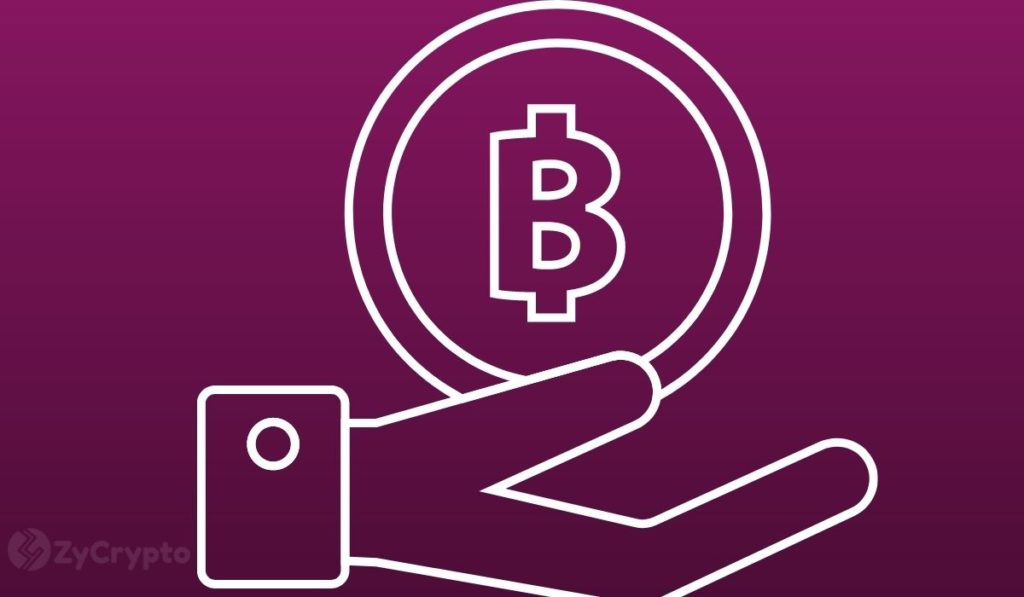 This Ottawa-Based Graphics Software Firm Is Now Holding Bitcoin As A Reserve Asset