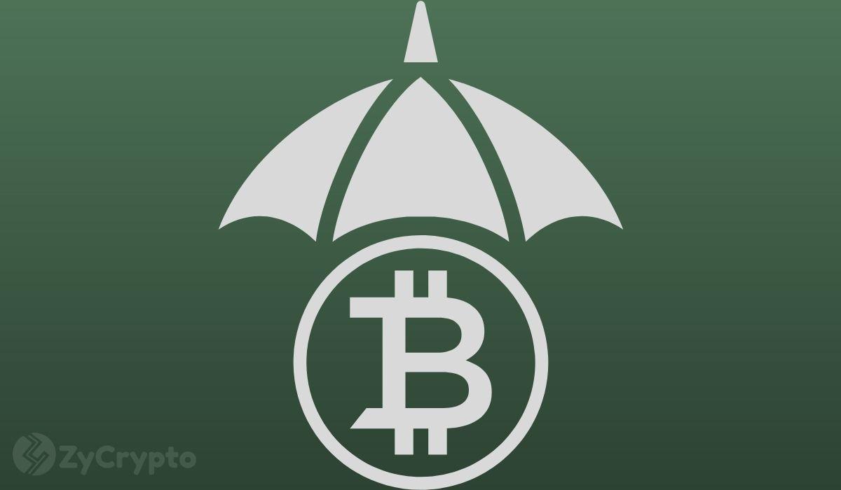 Warren Buffett Will Buy Bitcoin Soon, Says Morgan Creek's Jason Williams