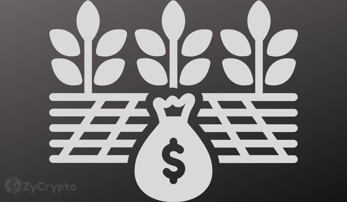 Binance Joins The DeFi Craze, Unveils New Platform For Yield Farming